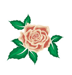 Tea rose in leaves in cartoon style vector