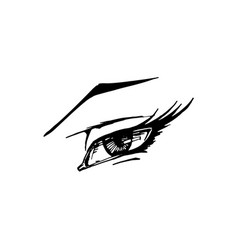 woman eye on white background vector image vector image