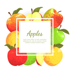 apples banner template with place for text farm vector image