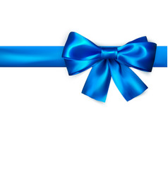 decorative bow with horizontal blue ribbon blue vector image