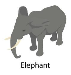 elephant icon isometric style vector image
