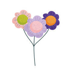 Flowers bouquet decoration ornamet nature isolated vector