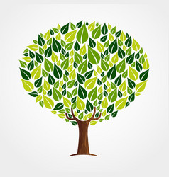 green leaf tree concept for nature help vector image