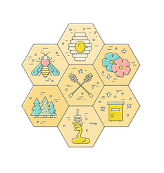 Honey design element vector