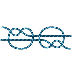 Knot vector
