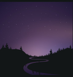 Landscape the starry night sky banner vector
