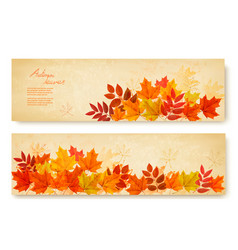 Set of two nature banners with colorful autumn vector