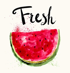 Watermelon fresh vector