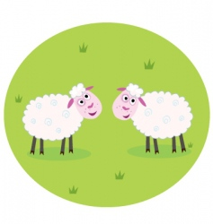 white sheep vector image vector image