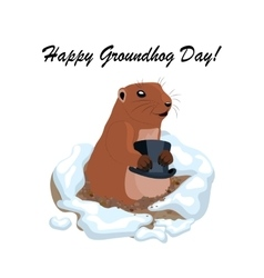 with cute groundhog holding vector image