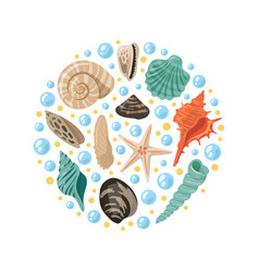Different tropical shells in circle shape vector