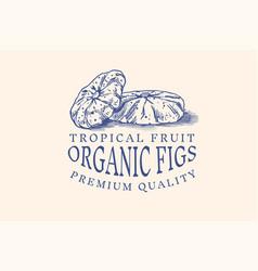 fresh fig badge dried fruit foliage label or logo vector image