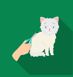 Grooming of a cat icon in flate style isolated on vector