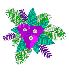 tropical bouquet of palm leaves bougainvillea vector image