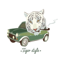 White smoking tiger vector