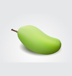 green mango isolated on a white background vector image