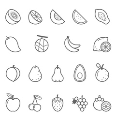 Lines icon set - fruit vector image