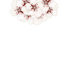spring background with cherry blossom place for vector image