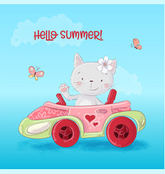 cute cartoon cat in car vector image