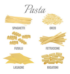 Pasta types spaghetti and orso set vector