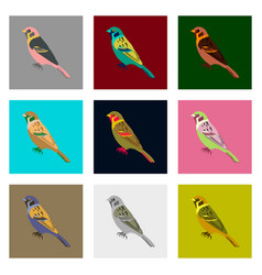 Set of in flat style sparrow vector