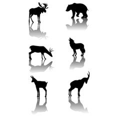 mountain animals vector image