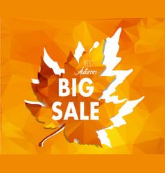 Autumn new season sales and discounts deals vector