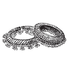 Bangles ring worn upon the arms vintage engraving vector