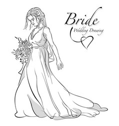 bride holding bouquet vector image
