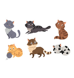 Fanny cartoon cats in different poses vector