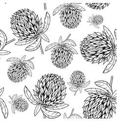hand drawn clover flower pattern vector image