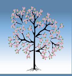 Peach tree in bloom vector
