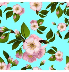 Seamless pattern with apple-tree flowers vector image