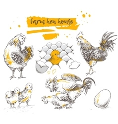 Set of farm chicken family vector