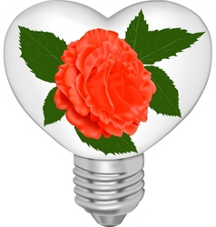 Bulb in the form of heart and in it a red rose vector image vector image