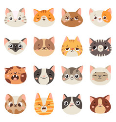 cute cats faces happy animals funny kitten vector image