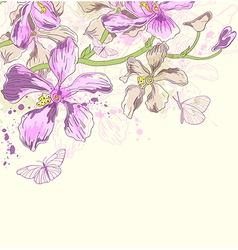 Decorative background with orchids vector image