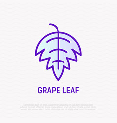 grape leaf thin line icon vector image