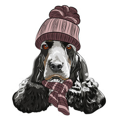 hipster dog english cocker spaniel vector image