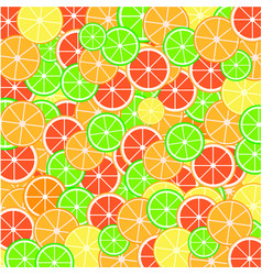 lemon and lime slices vector image