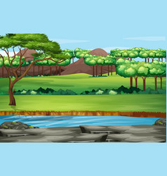 scene with many trees in park vector image