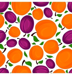 Seamless pattern of apricots vector image