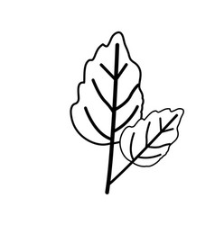 Sketch contour of wavy two leaves plant vector