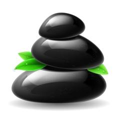 Stones spa vector