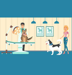 veterinary appointment flat vector image