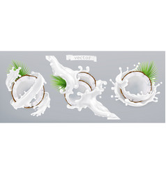 Coconut and milk splash 3d realistic icon vector