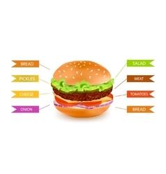 Fastfood hamburger filling infographics vector
