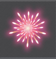 festive firework bursting salute isolated on vector image