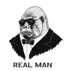 Gorilla like a real man vector