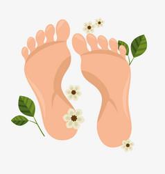 human foots spa treatment vector image